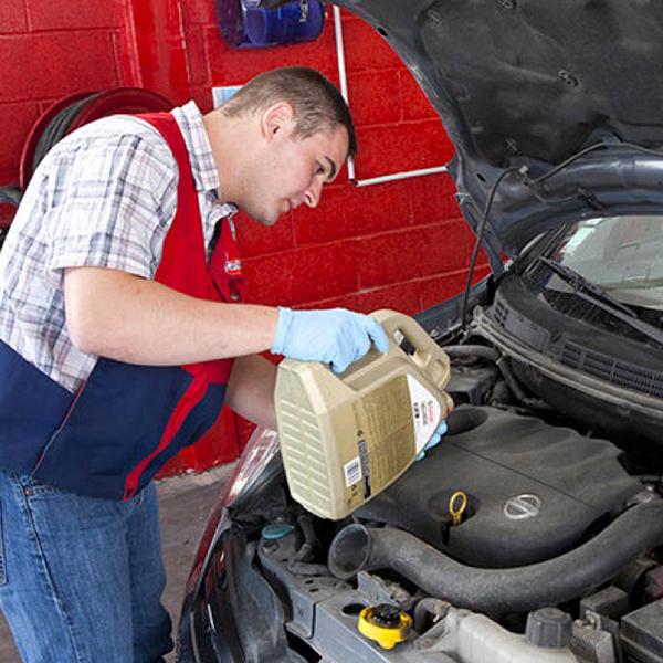 Profesional cambiando aceite del coche
