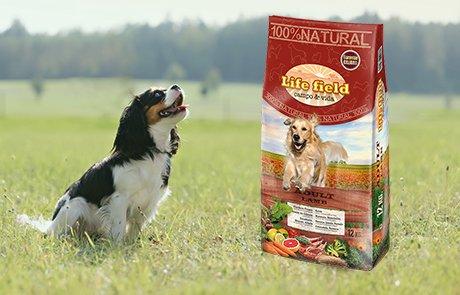 Life Field, alimentación para perros